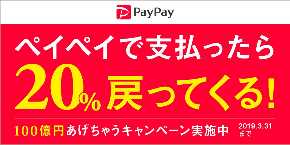 ダイマックでも paypay利用可能となりました!